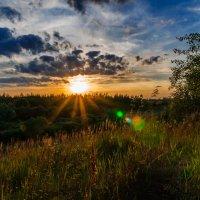 Закат над лесом. 13.08.2014. :: Анатолий Клепешнёв
