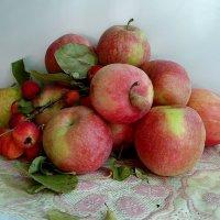 Яблочное ассорти :: nadyasilyuk Вознюк