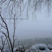 Снежные дали :: Anastasia Kaurova