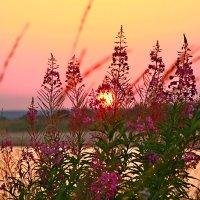 Куда прячется солнце... :: Galina S*