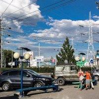 томск  ГОРОДСКИЕ   ДЖУНГЛИ   площадь  Южная :: михаил пасеков