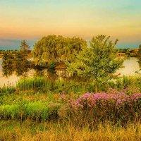 У озера. :: Gene Brumer