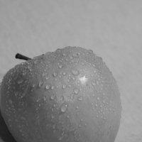 После дождика :: Артём Исаев