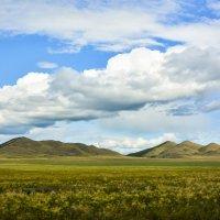 Тувинские степи :: юрий Амосов