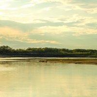 вечер на реке Пижма :: Julia Chuprova