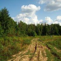 Вот моя деревня DSC07564 :: Андрей Лукьянов