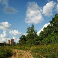 Вот моя деревня DSC07566 :: Андрей Лукьянов