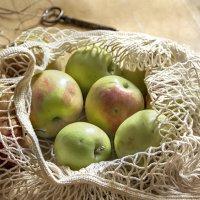 Купите яблочки...) :: Bosanat