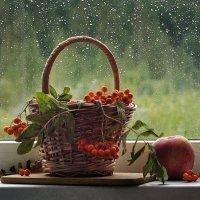 Скоро осень... :: Natali-C C