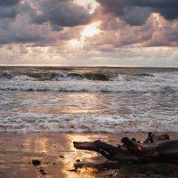 Балтийское море... :: Irina Jesikova