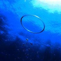 bubble ring :: Алекс Грэй