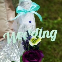 свадьба :: Оксана Хомченко