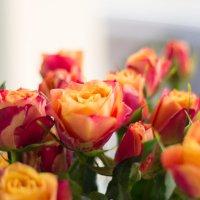 цветы для мамы :: Арина Михайлова
