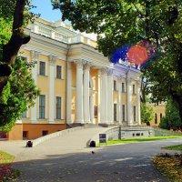 Гомель- Дворец Румянцевых и Паскевичей :: yuri Zaitsev