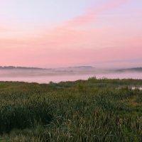 Сиреневый туман :: Вячеслав Исаков