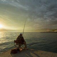 Ловись,рыбка! :: Дмитрий Палюнин
