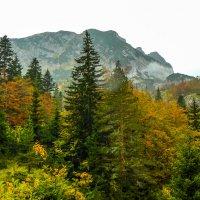 осень в горах :: Сергей Цветков