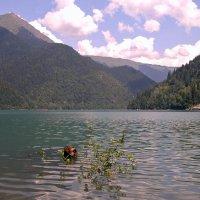 Абхазия.Озеро Рица. :: Сергей Черник
