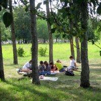 Творческий коллектив на отдыхе . :: Мила Бовкун