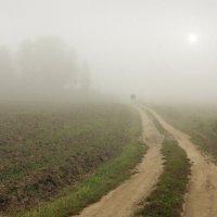 Дорога в тумане :: Валерий Талашов
