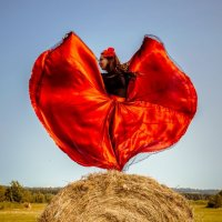 Танцы на траве :: Владимир Belov