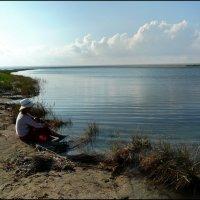 У озера :: Ольга Голубева