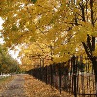 Осенний путь. :: Евгения Куприянова