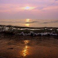 Море-любовь моя... :: Елена Прихожай