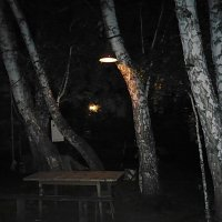 Ночь на даче :: натальябонд бондаренко