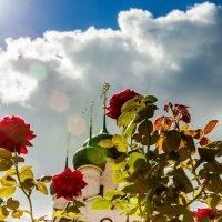 Райские кущи :: Александр Творогов
