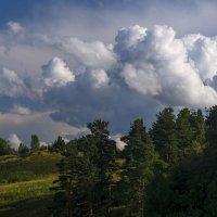 холмистый ландшафт :: ник. петрович земцов