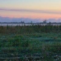 Туманное утро. :: Виктор Евстратов