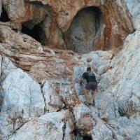 Взбирается ко входу в пещеру. Затем выйдет из пещеры с другой стороны и опять нырнёт в море. :: Галина