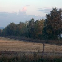 дорожный пейзаж :: лиана алексеева