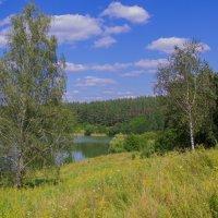 Берези над озером :: Дмитрий Гончаренко