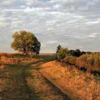 Скоро осень :: Сергей Михайлович