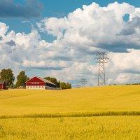 Норвежские поля :: Игнат Веселов