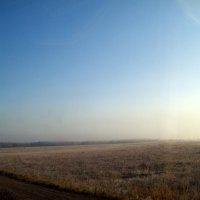 Утро туманное :: alemigun