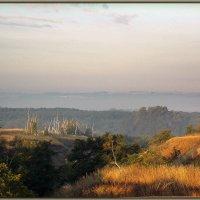 Пейзаж на ходу :: лиана алексеева