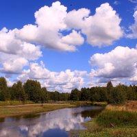 Облака - белокрылые лошадки :: Татьяна Ломтева