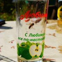Любимый :: Алексей Лукаев