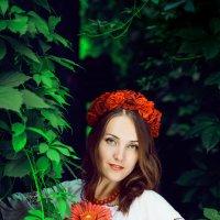 Слобожаночка :: Sergey Prokopenko