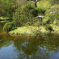 Японский сад :: Igor Khmelev