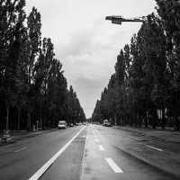 Путь :: Александра Васильченко