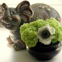 Слон с цветами. :: Елена