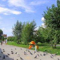 В городском парке лето . :: Мила Бовкун