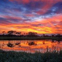 Африканский закат недалеко от Владивостока :: Ingwar