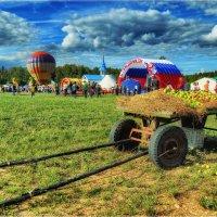 Казачий Фестиваль.Вид сбоку. :: Андрей Куприянов