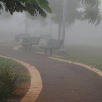 В нашем парке туман ... :: Aleks Ben Israel