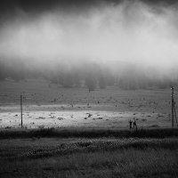 По дороге с облаками :: Сергей Белявцев